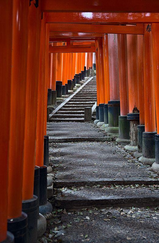 Torii - Fushimi Inari Shrine, Kyoto, Japan