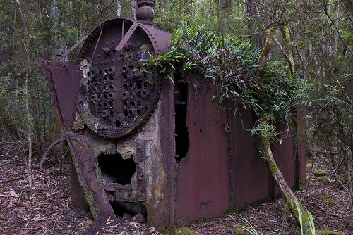 Clennetts top mill site, Bruny Island. Tasmania. Old sawmill that operated up until the late forties. #alfierepins