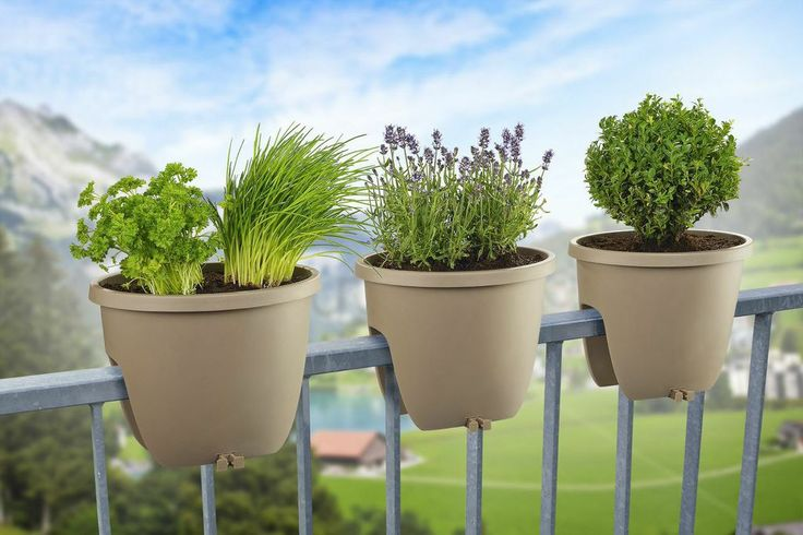 Balconia OVI - ideal for herbal garden. Perfect colour match and suitable positioning on the railing of your balcony. Everything you need to become an urban gardener.