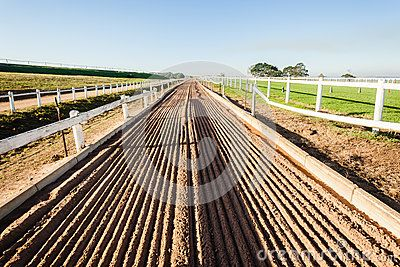 Horse racing training track sand in afternoon color