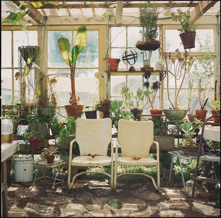 What a great idea for reclaiming windows. DIY Greenhouse