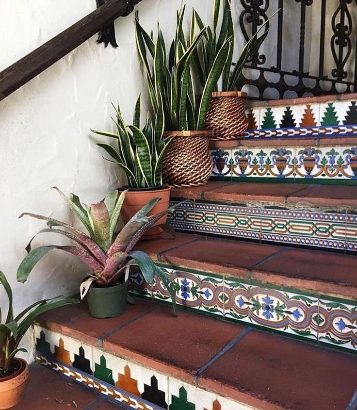 Mosaic Tile Stairwell Entryway with Potted Cacti