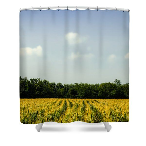 Summer Landscape Shower Curtain by Cesare Bargiggia