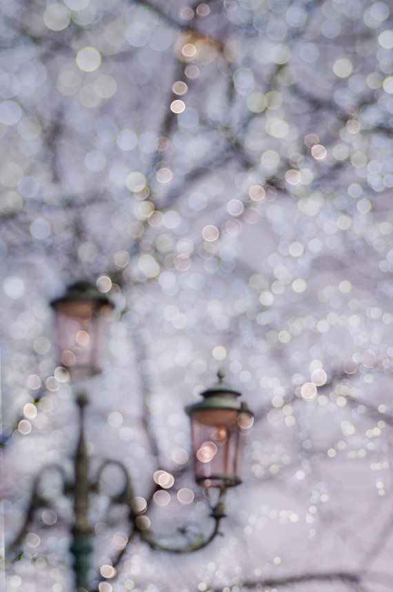 Fairy lights in winter.: