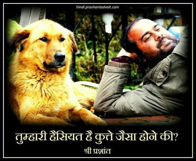 तुम्हारी हैसियत है कुत्ते जैसे होने की? ~ श्री प्रशांत  #ShriPrashant #Advait #conditioning #suffering Read at:-prashantadvait.comWatch at:-www.youtube.com/c/ShriPrashantWebsite:-www.advait.org.inFacebook:-www.facebook.com/prashant.advaitLinkedIn:-www.linkedin.com/in/prashantadvaitTwitter:-https://twitter.com/Prashant_Advait