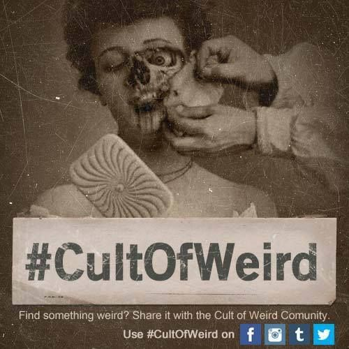 Ed Gein Cauldron Up For Auction In Wisconsin Weird News
