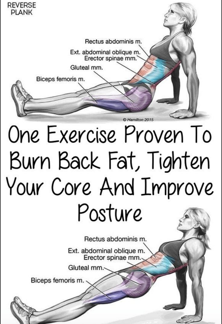 Okay, today you're going to learn how to reverse plank. One of the first places you gain weight is typically around yourbelly. It's also one of the hardest places to lose fat.But going to the gym…