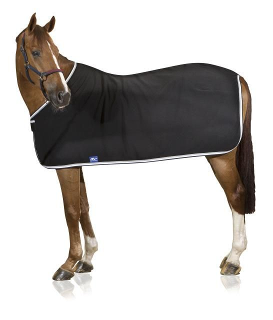 ANNA SCARPATI NELLA FLEECE SHOW RUG The Anna Scarpati Fleece Show Rug is the ultimate competition set show rug that is simply in another league from anything else available. The rug sets itself apart with a double (already thick and luxurious) fleece layer for extra warmth in winter.