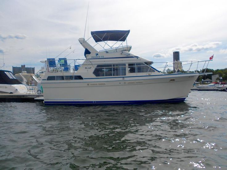 Cabin Cruiser powerboats for sale by owner.