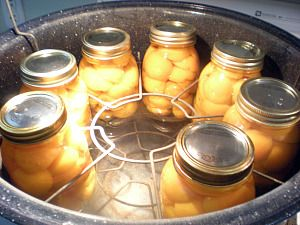 Canning Apricots - Doing this right now! I hope they turn out. Its just like peaches, super easy!
