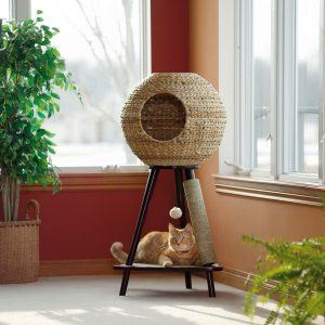 Sauder Woodworking Natural Sphere 43.7 in. Cat Tower - Cat Trees at Hayneedle