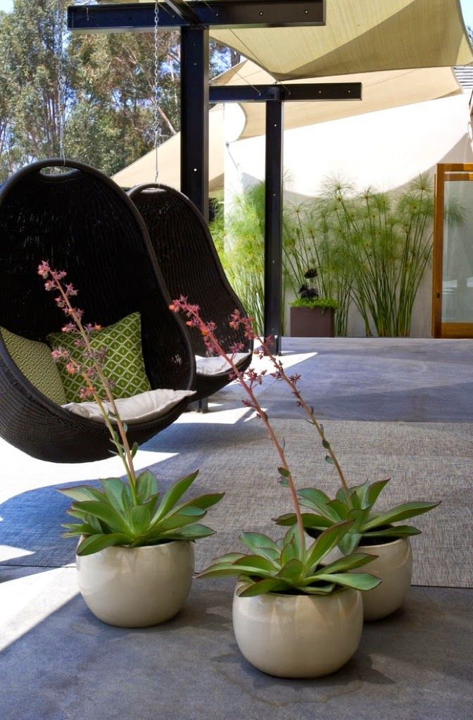 Sweet outdoor living space | Backyards Click