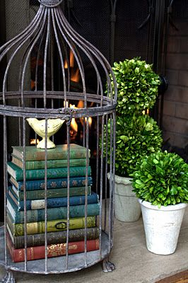 i just love birdcages :) Decorative way to display books. Birdcage ideas