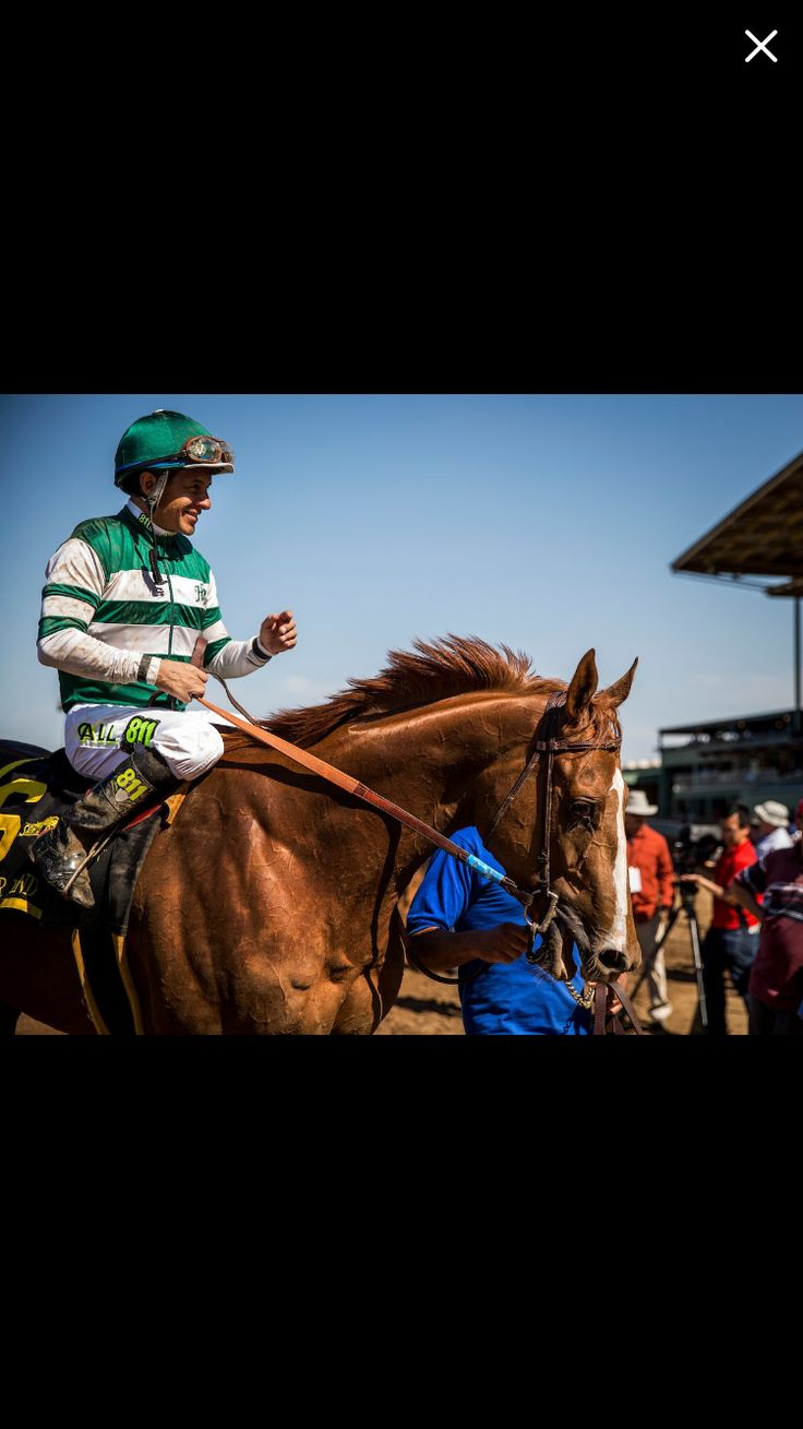 17 Best Images About Horse Racing On Pinterest Horse