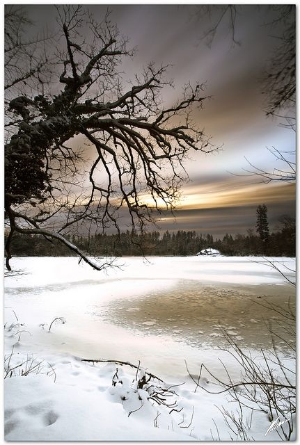 the beauty of winter
