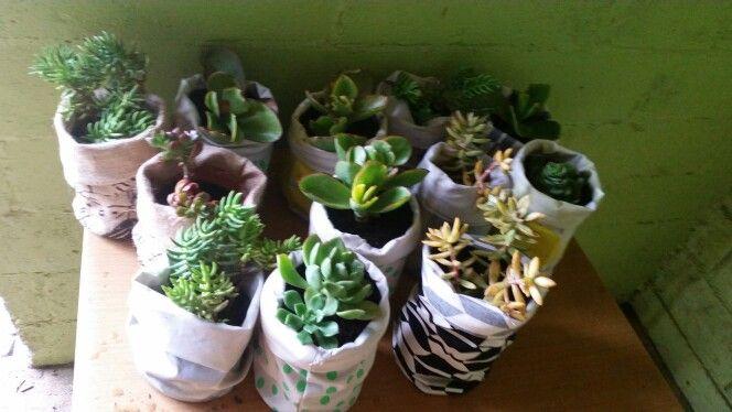 Plant pouches