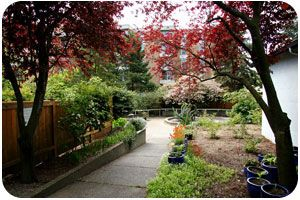 Fragrant Garden at Lighthouse for the Blind....The Seattle Lighthouse  2501 South Plum Street  Seattle, WA 98144