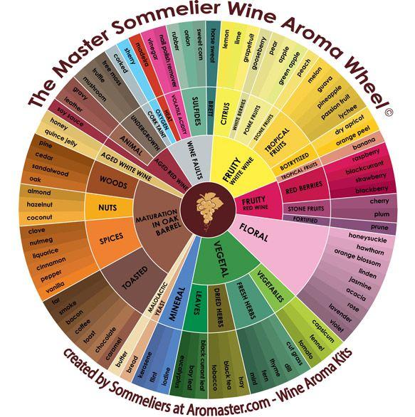 Roue des arômes pour le vin