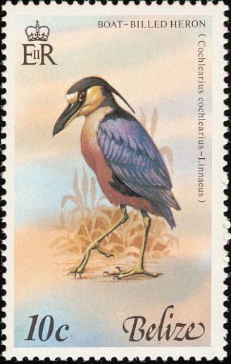 Boat-billed Heron stamps - mainly images - gallery format