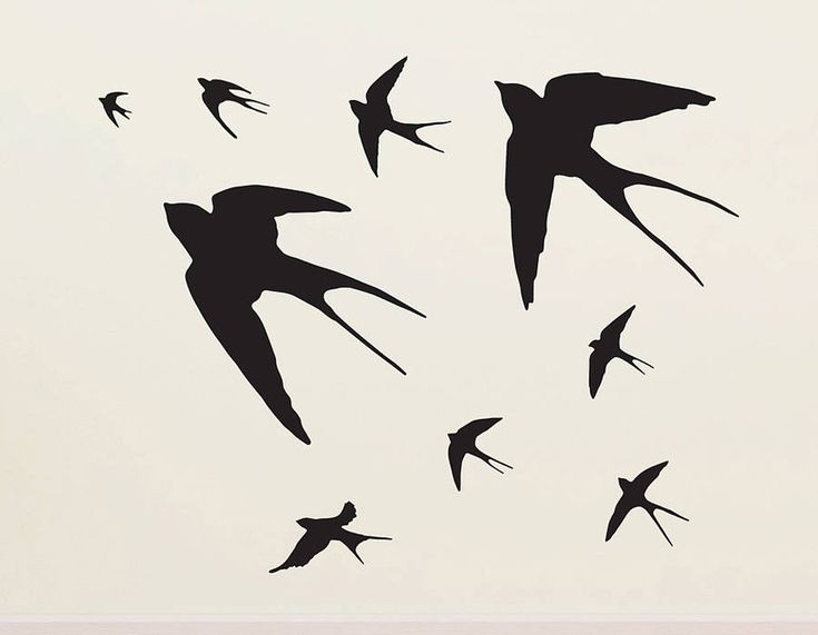 Flying Swallows Vinyl Wall Sticker - Contemporary Wall Stickers