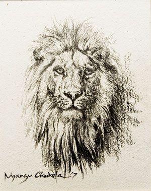 lion art tatoo - Google Search