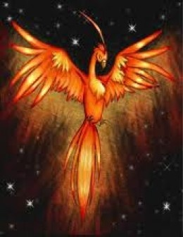 The Phoenix, another Scorpio Sun Sign Symbol. These people have the strength to reinvent their lives even after life altering changes that would kill a lesser person!