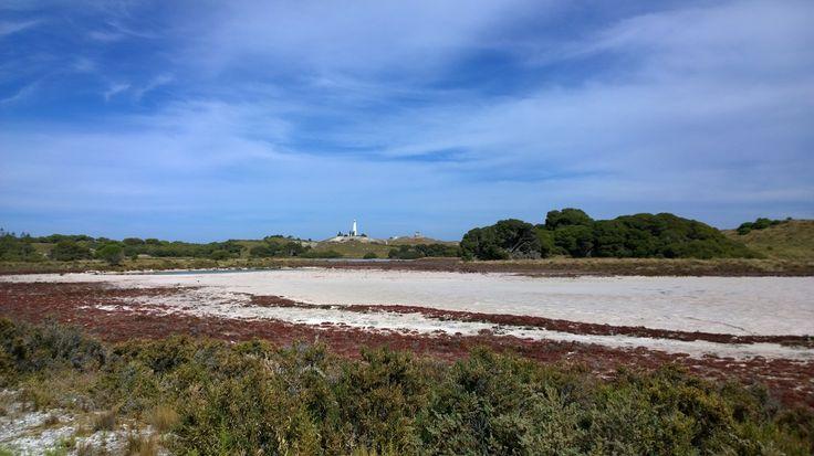 Beautiful colours of Rottnest Island