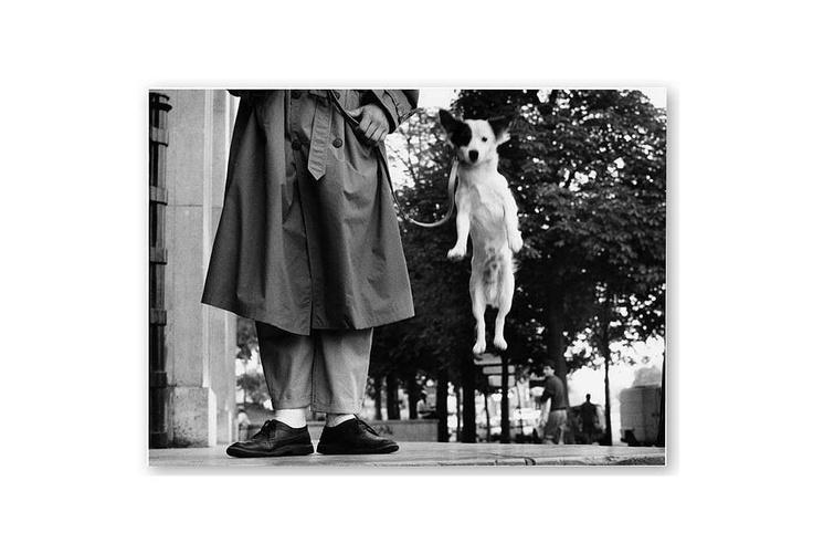 One Kings Lane - Behind the Lens - Elliott Erwitt, France 1989