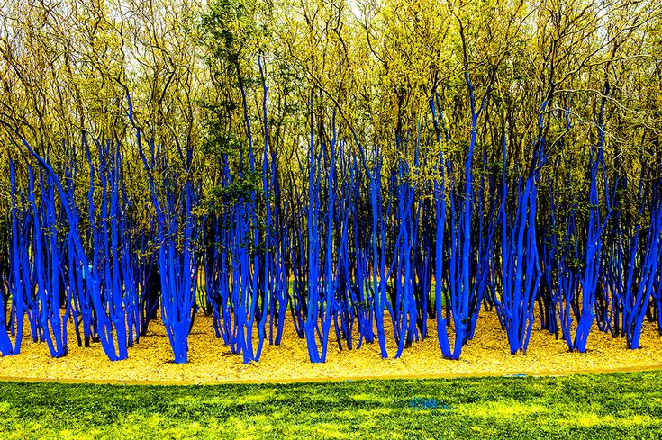https://www.codaworx.com/project/the-blue-trees-houston-arts-alliance #bluetrees #Houston #publicart Konstantin Dimopoulos
