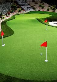 Image result for home putting green