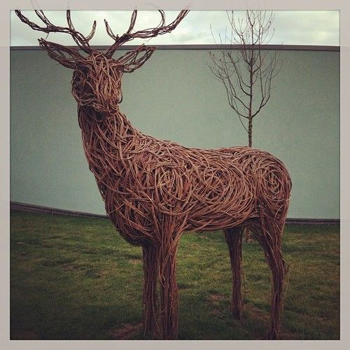 #garden #deer #wood #wicker #poo #grass #sky #garden #nice #lol - @samdatallman