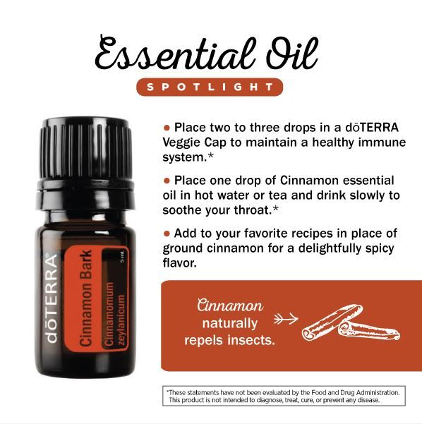 doTERRA Cinnamon Essential Oil Spotlight