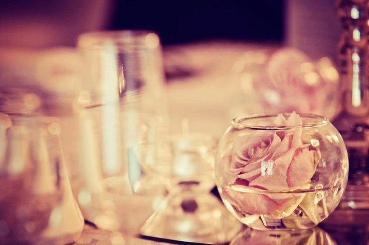 Beautiful Dawn Roses.
