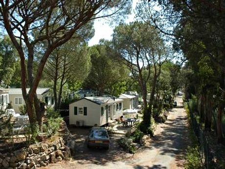 Douce Quietude, nr Saint-Raphaël, Provence. Family self catering in France.