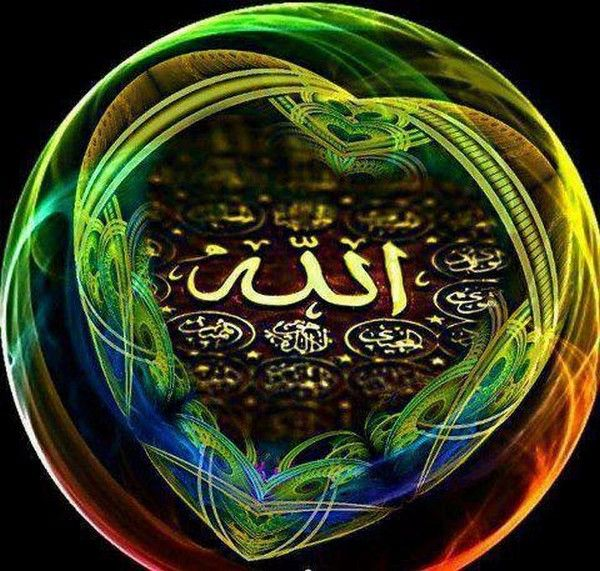 DesertRose,;,Beautiful Name Of ALLAH is One,;,