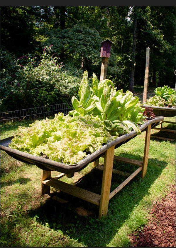 15 unusual vegetable garden ideas gardens garden ideas for Unusual raised garden bed designs