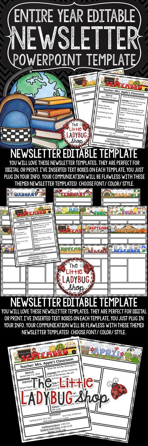 The  Best Monthly Newsletter Template Ideas On