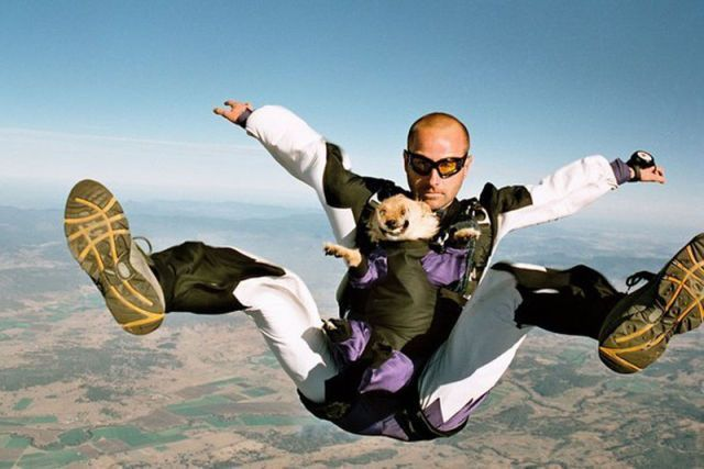 Introducing Canines to the World of Extreme Sports #extremesports #skydiving