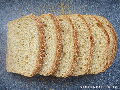 Maisbrood met polenta korst, recept, bakken, zelf maken, brood, oven makkelijk, lekker, deeg, bloem, polenta, maismeel, ontbijt, lunch, bijgerecht, onderweg