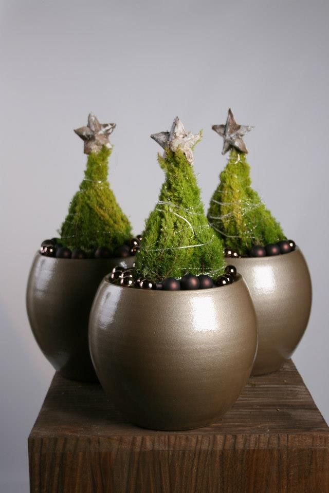 """Mini topiary trees with bullion wire """"garland"""" // Christmas at Florazon (Nl.)"""