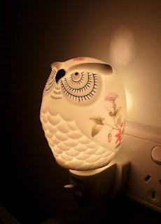 Owl Light #owl #light #lamp: Ooooo Owl, Lights Owl, Owl Ahol, Bykuş Owl, Owl Lamp, Collection Owl, Sporadically In, But Owl, I Owl
