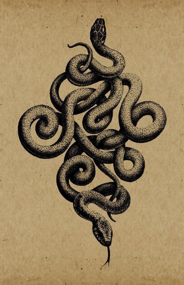 Afbeeldingsresultaat voor snakes etching