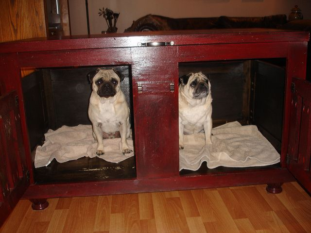 105 best dog crate & bed ideas to make images on pinterest | bed