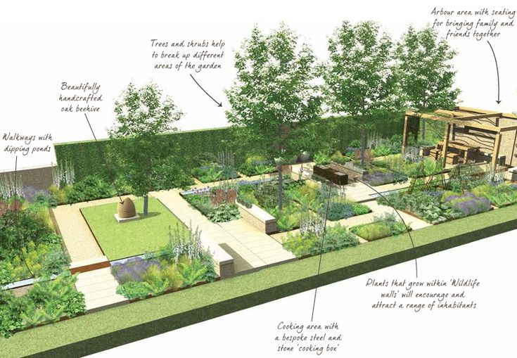 Illustration of chelsea garden homebase projects for Garden trees homebase