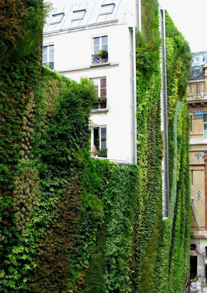 huge vertical garden + green facade