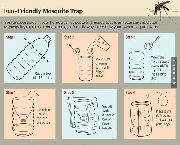 Kill mosquito from dubai ;)