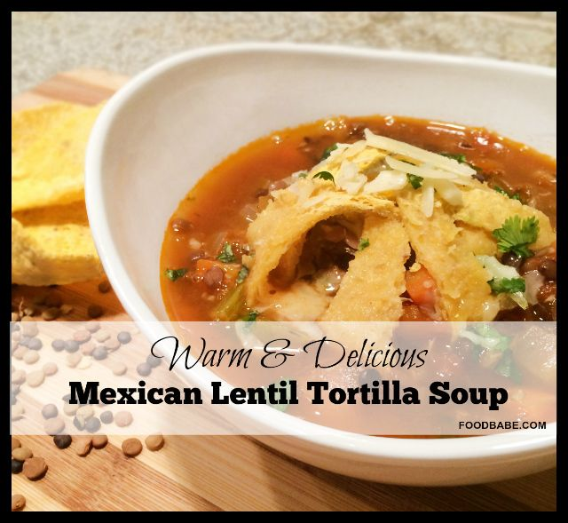 amazing mexican chicken tortilla soup recipe