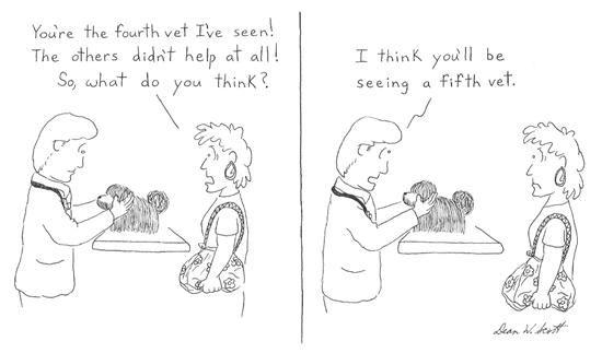 Cartoon Veterinarian Vet Tech Taking Care Stock Vector ...   Cartoon Vet Tech