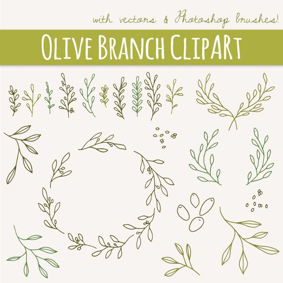 Rameaux d'Olivier & brins clipart / / brosses Photoshop / / éléments dessinés à la main / / Méditerranée arbuste feuillage Herb / / Vector / / utilisation commerciale