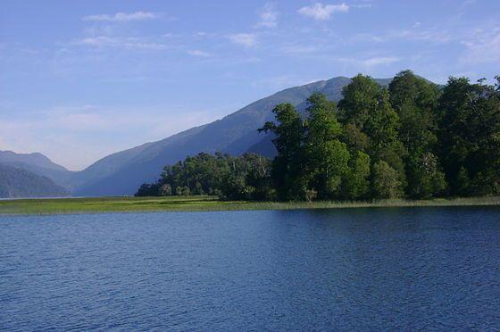 Lago Pirihueico.jpg